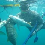 brazilian diver