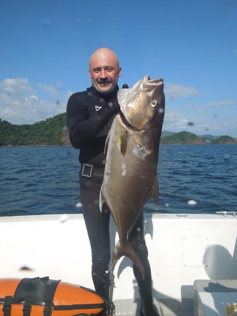 spearfishing amberjack
