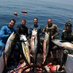 panama-yellowfin-tuna