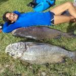 inshore-spearfishing-panama_23