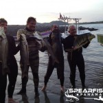 inshore-spearfishing-panama_brasil