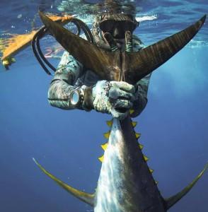 ulusub tuna