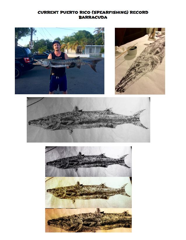 fish-print-gyotaku-2