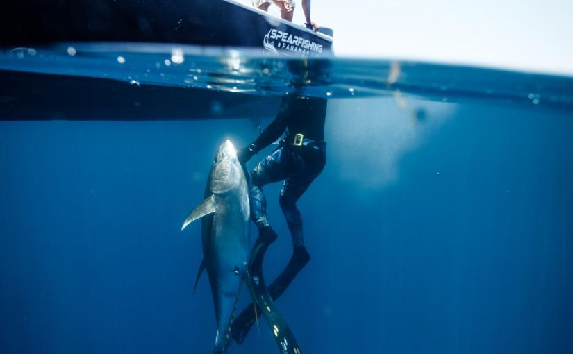 April 13-16 Tuna Trip