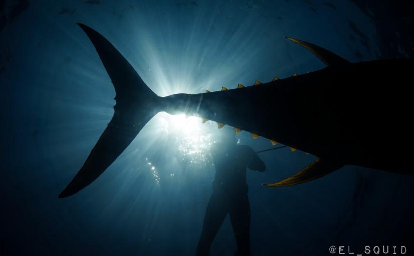 April 21-25 Tuna Trip
